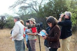 Morning Outing for Novice Birders