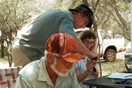 Quentin Hagens (standing) assists the trainees Dirk and Marianne with the finer skills of bird ringing.